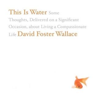 David Foster Wallace - Ez a víz